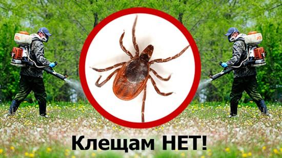 akaritsidnaya obrabotka banner1